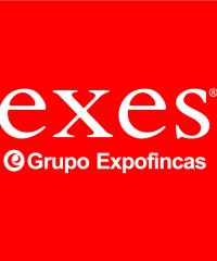Exes Grupo Expofincas Inmobiliaria L'Hospitalet