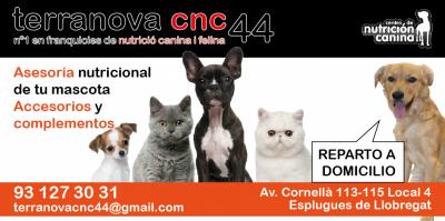 guia33-esplugues-de-llobregat-animales-mascotas-peluqueria-canina-terranova-cnc-44-esplugues-de-llobregat-24058.png