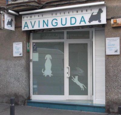guia33-hospitalet-de-llobregat-veterinario-clinica-veterinaria-avenida-l-hospitalet-9973.jpg